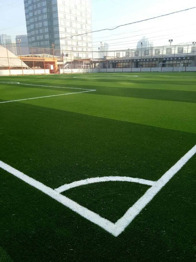 Real Looking Plastic Landscaping Synthetic Grass  Ensuring Erec