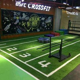 China Perfect Polyethylene Gym Artificial Turf Low Maintenance Costs factory