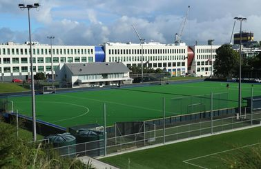 Environmentally Friendly Hockey Artificial Turf Durable Wear Resistance