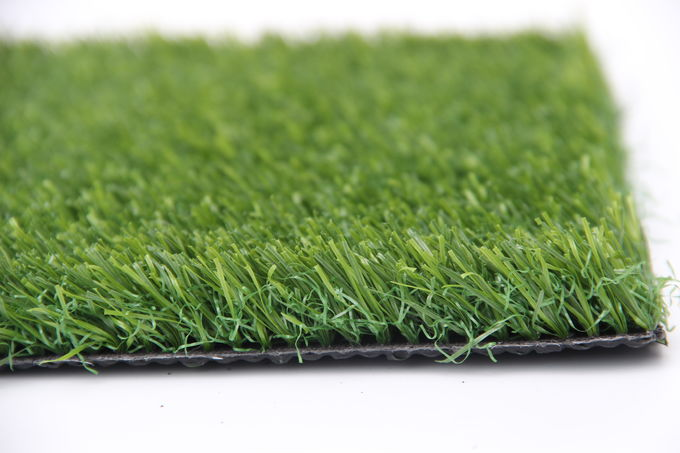 Straight Curved Dog Friendly Artificial Grass Anti - UV  Anti - Aging